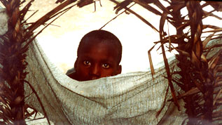 A Boy in Haiti
